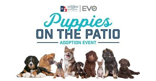 Puppies on the Patio Adoption Event