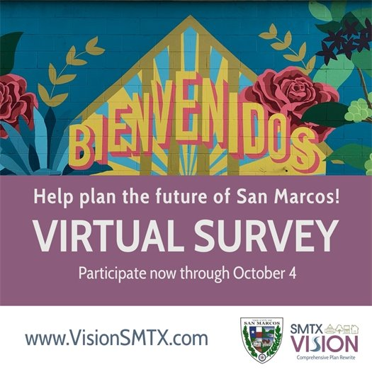 Vision SMTX Survey