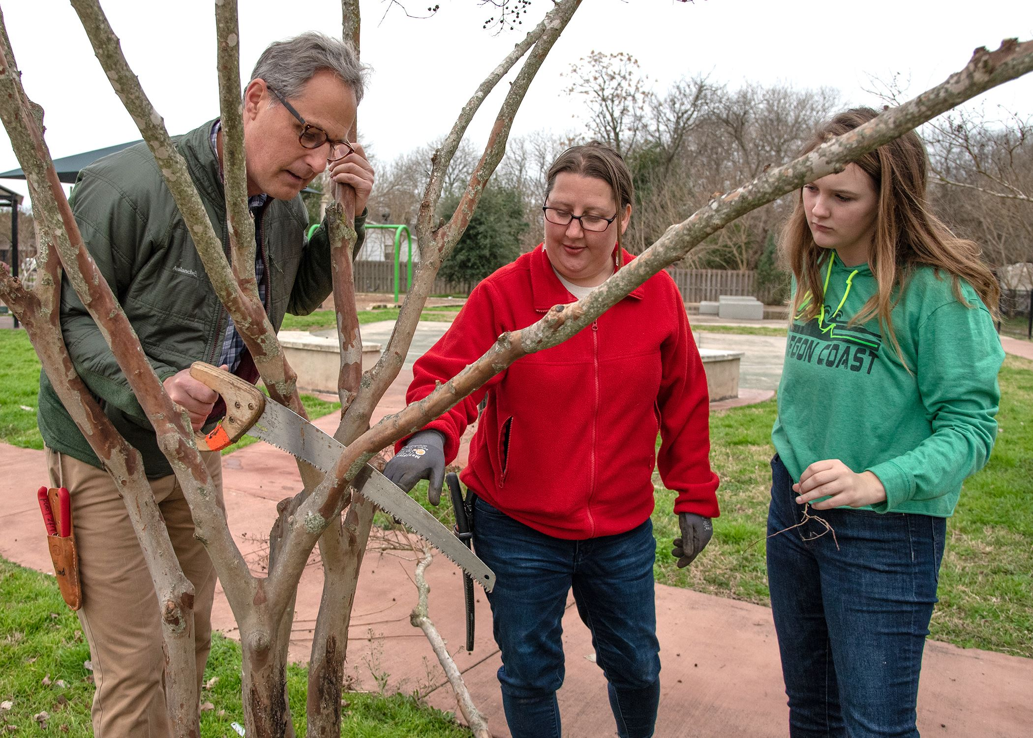 Photo of three people working on a tree, with one person holding a saw against one branch for a trim