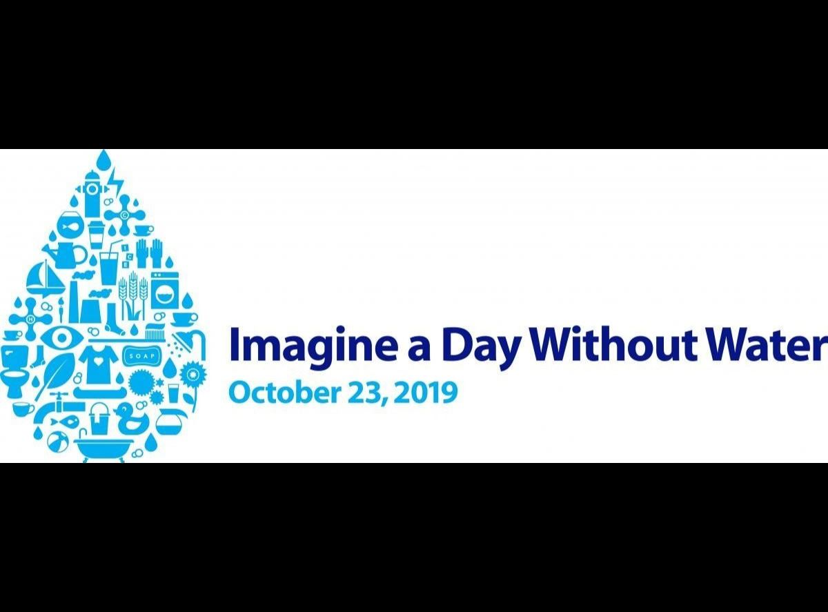 Imagine A Day Without Water Logo
