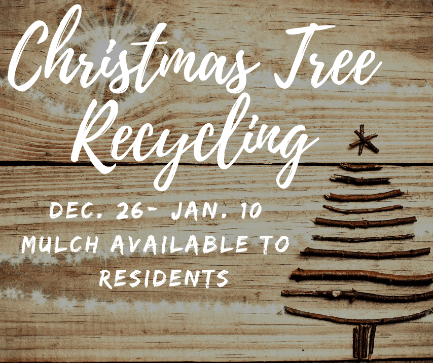 Wooden background with Christmas tree imprint and graphic overlay featuring Christmas tree recycling