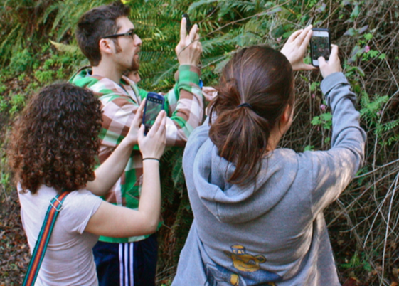 Photo of students in the field taking photos of local plants and/or wildlife