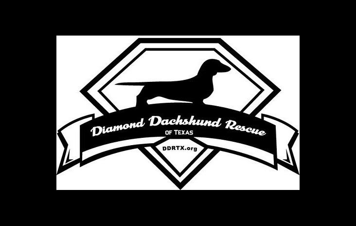 Diamond Dachshund Rescue of Texas logo