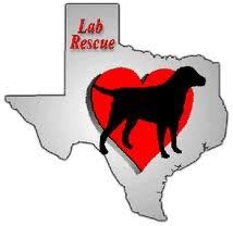 Lab Rescue logo