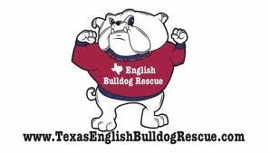 Texas English Bulldog Rescue